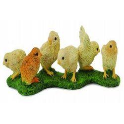 Kurczaki - rozmiar S