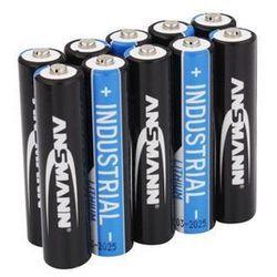 ANSMANN Ansm Lithium Batterie Micro AAA 10er | FR03 1.5V