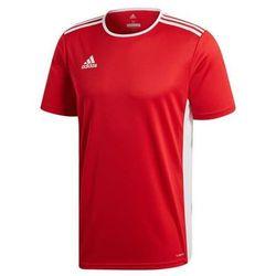 Adidas Koszulka Junior T-shirt Entrada 18 CF1038